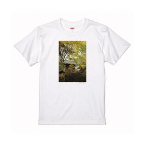 【寄付対象】【CHIKUGO百景】もみじ谷Tシャツ(送料無料)