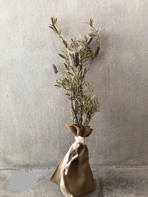dry flower ボトルブラッシュリグローサス
