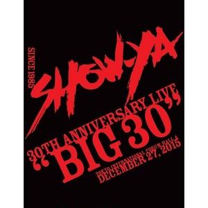 """""""SHOW-YA BIG30""""パンフレット"""