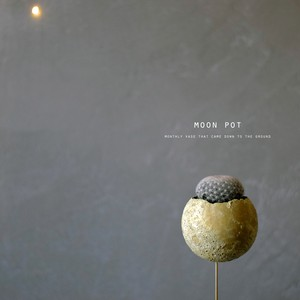 moon pot(サボテン・満月)