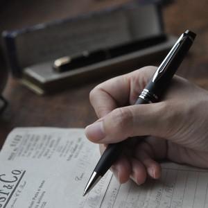 Waterman expert ll bill point pen