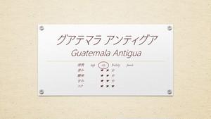 グアテマラ アンティグア アゾテア農園 200g