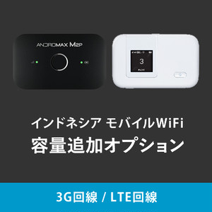 容量追加オプション1GB (3G回線 / LTE回線プラン)