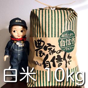 北海道産極上ののせ米(ななつぼし)10kg白米(令和2年度産)