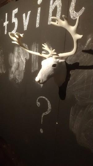 【壁ドン】【キスの練習】にいかがですか?鹿の首