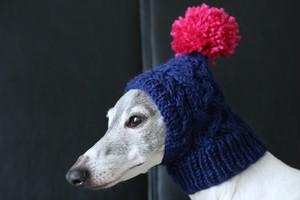 編み込みピチョン帽用 オプションポンポン