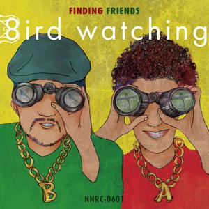 finding friends / 8ird watching