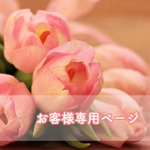 ★お客様専用410902★