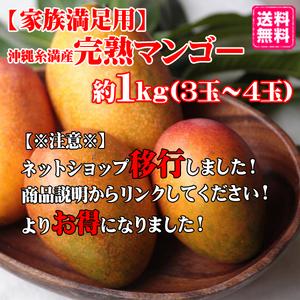 【ショップ移行しました!下記リンクから新ショップへ】家族満足用 沖縄糸満産完熟マンゴー約1kg(3〜4玉)