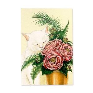 7.ねこと芍薬 ポストカード / White Cat and Peonies Postcard