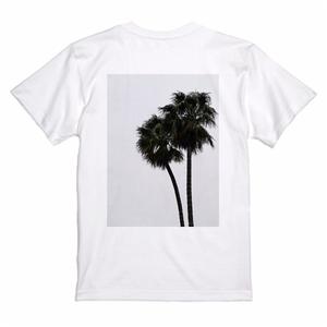 """December, November"" T-shirts  BIG Palm Tree"