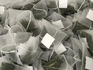 緑茶 ご家庭用・職場用ティーバッグ500個