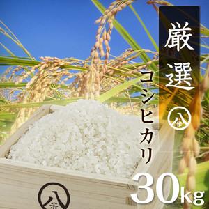 厳選コシヒカリ(白米 30kg)令和元年産