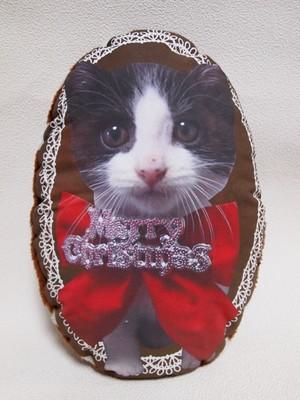 子猫ののフォトクッション