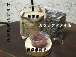 想星米と梅干とカワラケツメイ茶のセット(送料込)