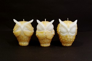 OWL/Gold~Three wise owls~