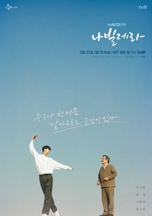 韓国ドラマ【ナビレラ-それでも蝶は舞う-】DVD版 全12話