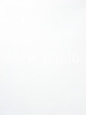 【D-parts_B_09】写真素材(背景写真セット 実写キャンバス)