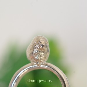 マメルリハの指輪