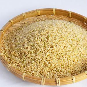 自然乾燥米ササニシキ玄米30kg