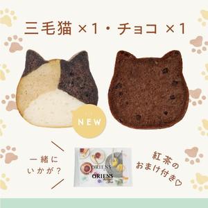 《9月の新商品》【紅茶のおまけ付き】子ねこハウス付き!ねこねこ食パン(チョコ&三毛猫)【送料・税込】