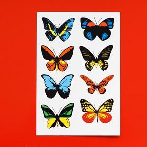 タトゥーシール 蝶