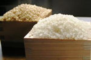 松橋ファームのゆめおばこ(玄米)5kg