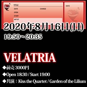 【来場チケット】8/16(日)VELATRIA