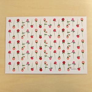 千日紅のラッピングペーパー WP17