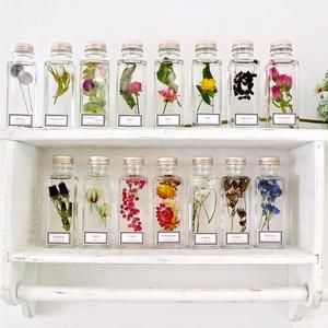 組み合わせ自由な植物標本集 (ハーバリウム 5本セット)