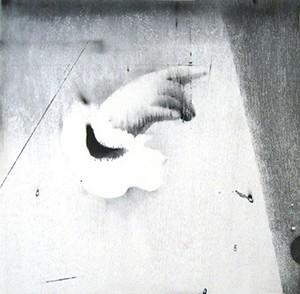 渡邉加奈子「night bird」  WATANABE Kanako/woodblock print