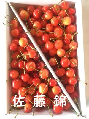 1kg×4箱(4kg) さくらんぼ  佐藤錦  家庭用 ※発送は6/20頃~