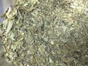 自然栽培自家農園産バジル「3種類」ドライハーブ量り売り5g 「スイートバジル」or「ホーリーバジル」or「タイバジル」