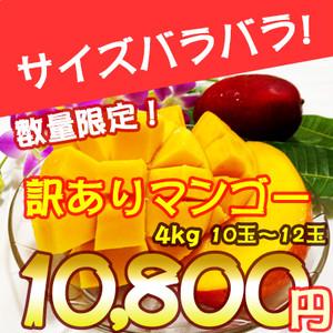沖縄県産訳ありマンゴー4kg【10玉前後】