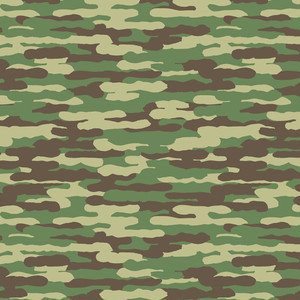 camouflage_012