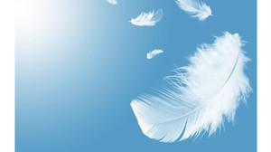 20天使のエッセンス