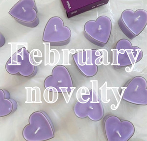 ❤︎ February novelty ❤︎