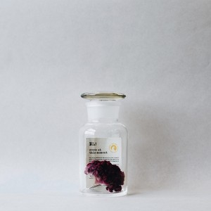 × SILENT POETS GLASS CONTAINER NO.1 (M)