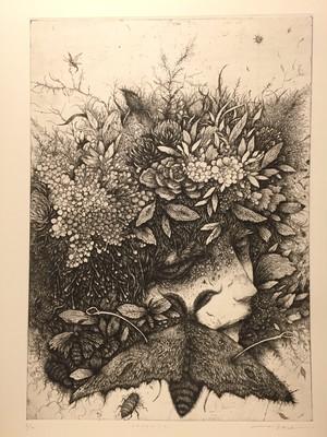 生熊奈央 銅版画「corrola」36×25.5cm エッチング/シートのみ