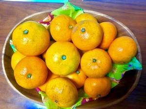 ふぞろいの蜜柑たち 1kg〜