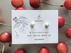 桜の種ピアス