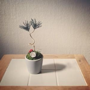 水引の盆栽飾り [白梅]