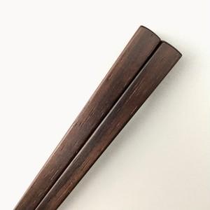 ジャカランダ / S  18cm