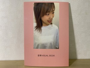 愛華VISUAL BOOK