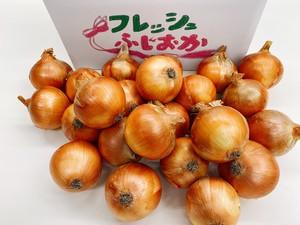 玉ねぎ 10キロ