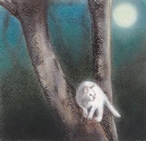 月夜猫(パステル画 原画) 額装込み