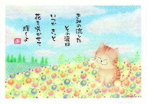 ポストカード No.9 明日花-asuka-