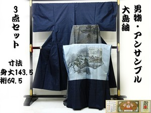 ☆21270☆中古品 本場大島紬 男物 亀甲模様 3点セット