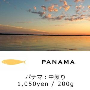 MONTHLY BEANS No.2:PANAMA - パナマ - 中煎り