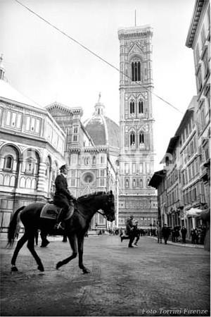 1973年撮影 イタリア フィレンツェ 馬【405197301】
